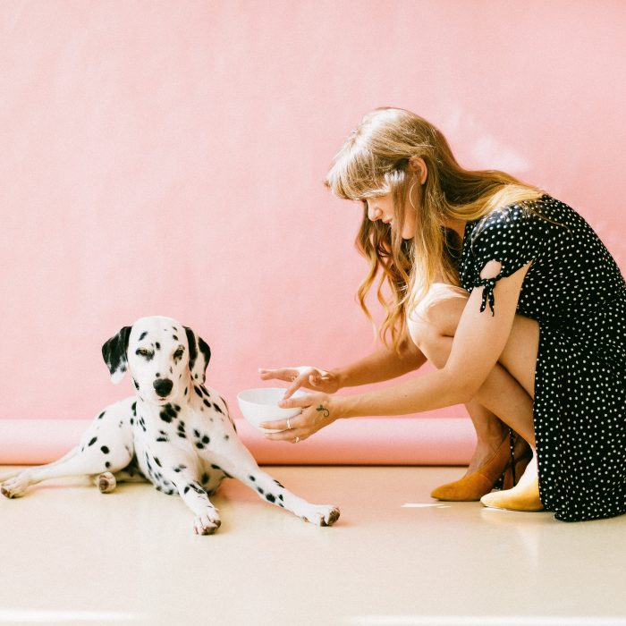 white-and-black-dalmatian-dog-sitting-in-front-of-woman-near-3297502